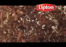 TEA_lipton_preview